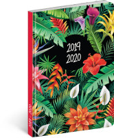 18měsíční diář Petito - Tropic 2019/2020