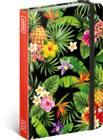 Týdenní diář Ananasy 2020