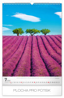 Nástěnný kalendář Stromy 2020