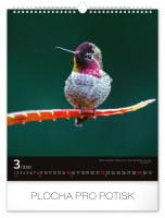 Nástěnný kalendář A3- Štěňata