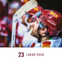 Nástěnný kalendář- Česká fotbalová reprezentace