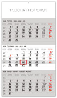 Nástěnný kalendář 3měsíční standard šedý - s českými jmény 2020
