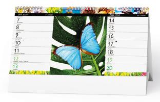 Stolní kalendář- Chytrá žena