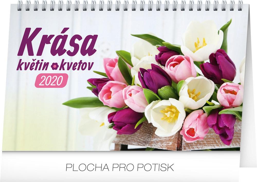 Stolní kalendář- Z domova 2019